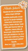elifelif-agustos-24